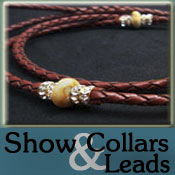Dog Show Collars and Leads
